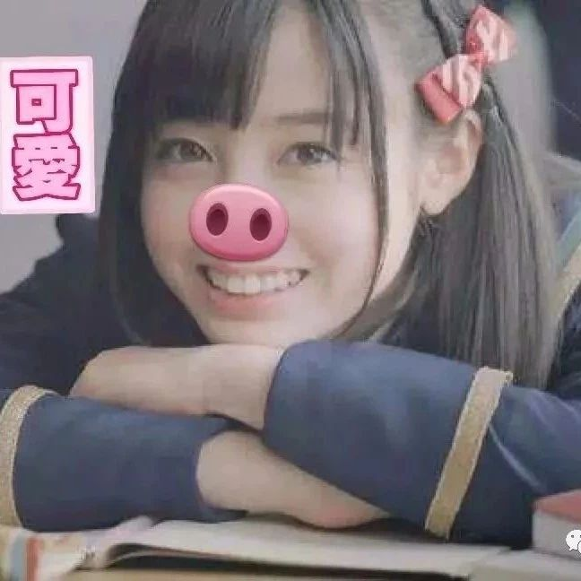 """pig out"" 是""豬跑了""?一起來學學英文的""豬""俚語吧!"